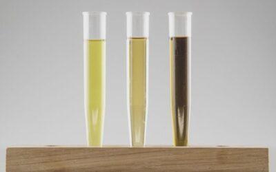 Hur väljer man CBD olja?